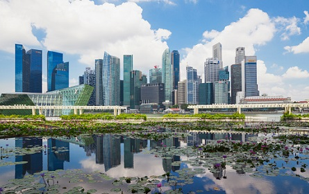 Republic of Singapor, Singapore, skyline of Marina Bay District with lily pond in the foreground
